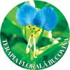 Terra Bucovina